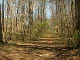 744 Tucker Trail - Photo 11