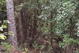 0 Trotters Ridge - Photo 13