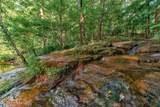 6185 Quail Mountain Trail - Photo 54