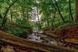 6185 Quail Mountain Trail - Photo 55