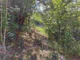 645 Lake Deborah Drive - Photo 11
