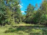 645 Lake Deborah Drive - Photo 8