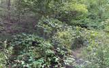 3022 Jump Off Ridge - Photo 9