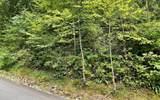 0 Bear Trail - Photo 4