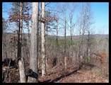 1475 Cherokee Gold Trail - Photo 10