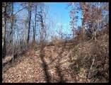 1475 Cherokee Gold Trail - Photo 8
