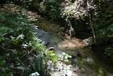 00004 Brushy Mountain Road - Photo 8