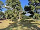 207 Timberland Drive - Photo 1