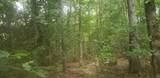 15 Dogwood Trail - Photo 7