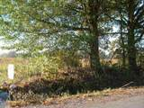 0 Morton Bend Rd - Photo 14