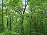 0 Wild Bird Lane (Alex Mountain) - Photo 1