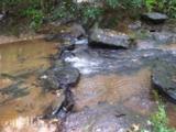 7505 Tribble Gap Rd - Photo 4