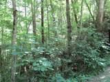 0 Ridgepole Drive Ridgepole Pt 1 - Photo 5