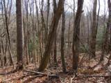 0 Pleasant Mtn Dr (Southwoods Pt 4) - Photo 1