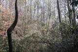 0 Woods - Photo 9