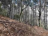 0 Pine Ridge - Photo 9