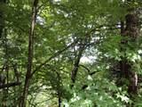 0 Smokey Hollow Drive - Photo 2
