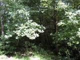 0 Smokey Hollow Drive - Photo 5