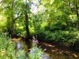0 Bell Creek Estates - Photo 11