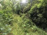 0 Spring Cove Trail, Lot 38 - Photo 16