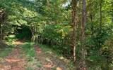 0 Bear Paw Lane - Photo 1