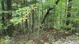 Lot 39 Mangums Trail - Photo 3