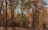 LOT 49 Fires Creek Cove - Photo 15