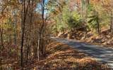 LOT 49 Fires Creek Cove - Photo 24
