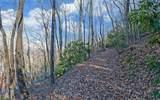 0 Rainwater Trail - Photo 7