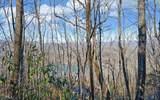 0 Rainwater Trail - Photo 8