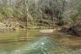 0 Coon Creek Road - Photo 21