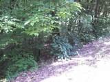 0 Roberts Creek Ln - Photo 4