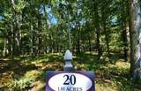 4546 Fawn Path - Photo 14