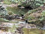 0 Mockingbird Ln - Photo 4