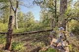 108 Plainsman Ln - Photo 3