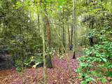 0 Shadow Walk Dr - Photo 7