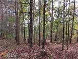 1336 Birch Lane - Photo 6