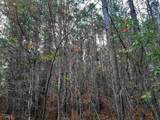 0 Pine Valley Rd - Photo 1