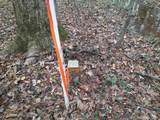 0 Pine Valley Rd - Photo 9