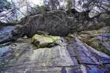 7735 Wolf Creek Rd - Photo 71