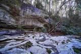 7735 Wolf Creek Rd - Photo 72