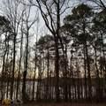 223A 223A Piedmont Lake Road - Photo 33