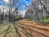 0 Alec Mountain Road - Photo 17