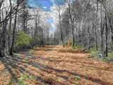 0 Alec Mountain Road - Photo 18