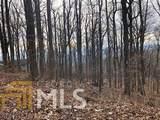 0 Big Stump Mountain Trl - Photo 5