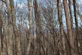 0 Trailwood Drive - Photo 11
