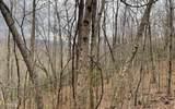 0 Gabriel Ridge - Photo 40