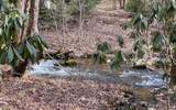 546 Compass Creek Dr - Photo 6