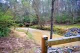 628 Gold Flume Way - Photo 88