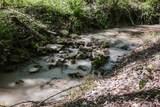 1622 Mayne Mill Road - Photo 50